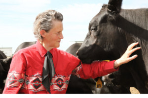 Temple Grandin National Book Tour Stops At The Arvada Center
