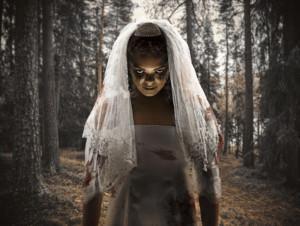 Louis Viljoen's Gripping Comedy-Horror, THE DEMON BRIDE, Comes To The Fugard Theatre