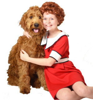 ANNIE Comes to Beef & Boards Dinner Theatre, Today