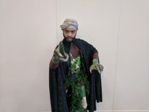 Dandelion Productions Announce the Return of Connecticut Free Shakespeare