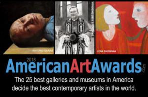 2018 American Art Award Winners Announced