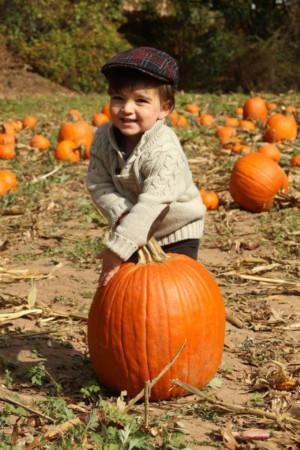 Fun Fall Activities Announced At Liberty Hall Museum