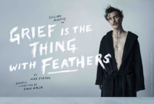 Wayward Productions Presents Enda Walsh's Adaptation Of Max Porter's Novel GRIEF IS THE THING WITH FEATHERS