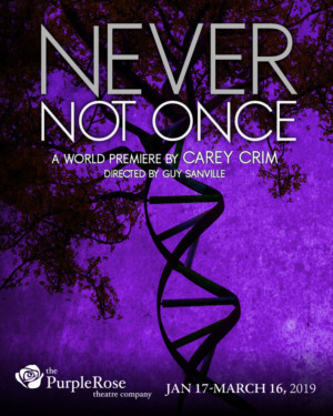 NEVER NOT ONCE Makes World Premiere at Purple Rose Theatre Company