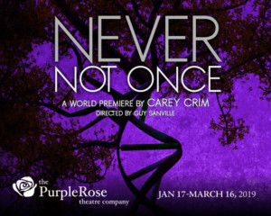 Purple Rose Theatre Opens NEVER NOT ONCE This Month