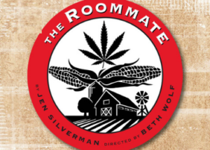 Citadel To Stage Chicago Suburban Premiere Of Jen Silverman's Comedy THE ROOMMATE