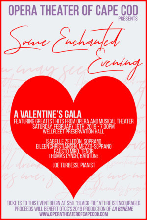 Opera Theater Of Cape Cod Announces Valentine's Celebration Gala
