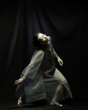 Vangeline Theater And The New York Butoh Institute Present Hitohana Hitosekai And The Workshop Make Visible