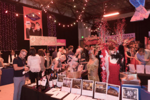 Theatreworks Silicon Valley Announces One-Night-Only Spring Fundraiser