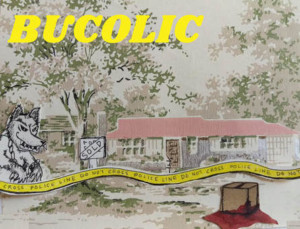 BUCOLIC A Dark Comedy Musical About Small-Town Murder, Starts 5/4