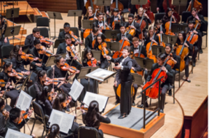 Philadelphia Young Artists Orchestra 24th Annual Festival Concert Presented This Sunday