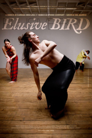 Rebecca Stenn Company Presents ELUSIVE BIRD At Gowanus Loft