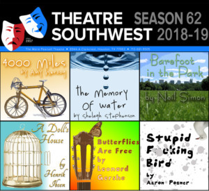 Theatre Southwest Announces 62nd Season - A DOLL'S HOUSE, and More!