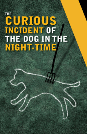 Actors Theatre Of Louisville Presents THE CURIOUS INCIDENT OF THE DOG IN THE NIGHT-TIME