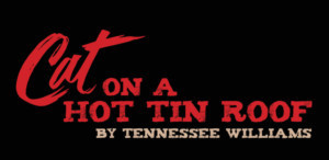 Andrea Lynn Green And Michael Raver To Lead MTC Mainstage's CAT ON A HOT TIN ROOF