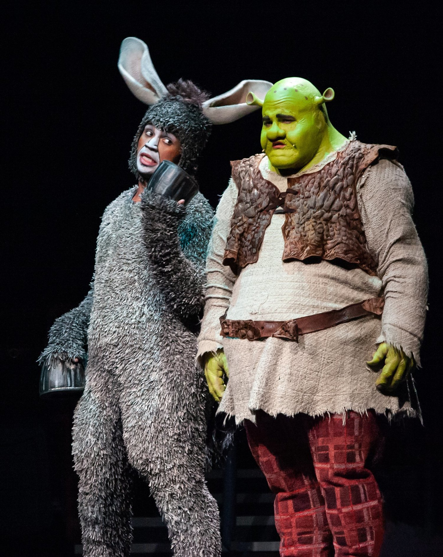 Review Roundup: SHREK THE MUSICAL at Broadway At Music Circus; What Did The Critics Think?