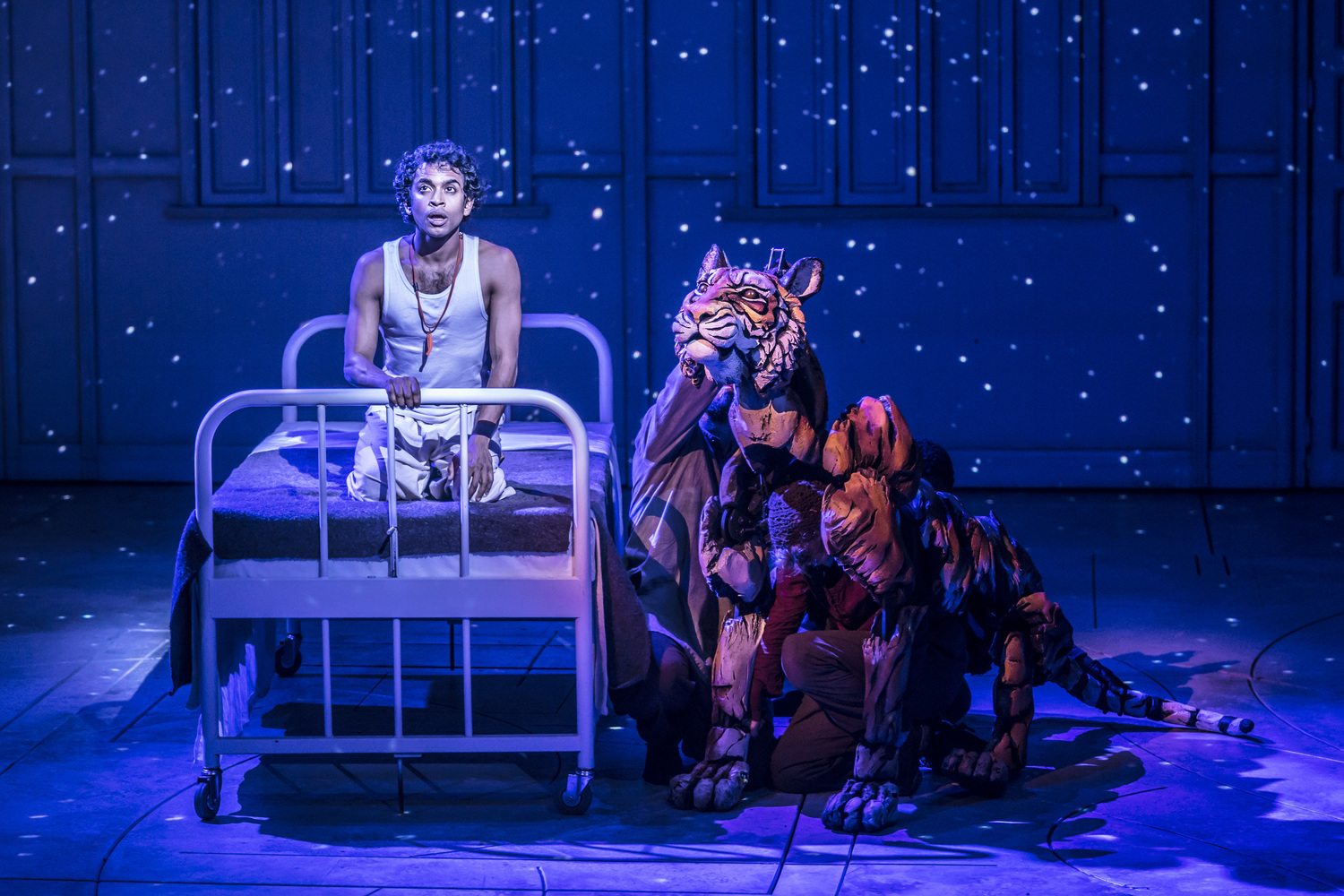 BWW Review: LIFE OF PI, Crucible, Sheffield