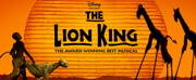 THE LION KING Celebrates its 9000th Broadway Performance Today!