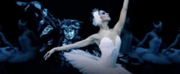 SWAN LAKE to Play Moscow Kremlin Theatre