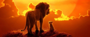 Prequel to Live-Action THE LION KING in the Works at Disney Photo