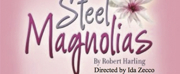 STEEL MAGNOLIAS Opens This Month At The Arctic Playhouse