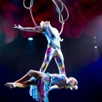 CIRQUE DREAMS HOLIDAZE to Ring in the Holidays at Van Wezel