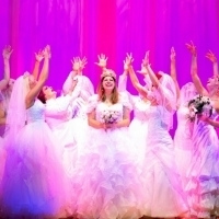 MURIEL'S WEDDING THE MUSICAL - New Tickets On Sale Monday