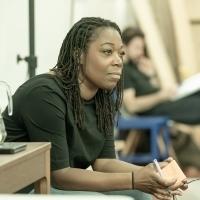 BWW Interview: Michele Austin Talks THE HUNT at Almeida Theatre Photo