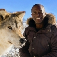 Smithsonian Channel Explores The Wild World Of Man's Best Friend In AMAZING DOGS