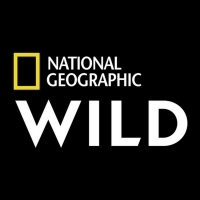 Nat Geo WILD to Premiere OUT THERE WITH JACK RANDALL