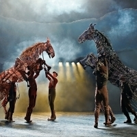 The National Theatre Of Great Britain's Production of WAR HORSE Will Tour Australia I Photo