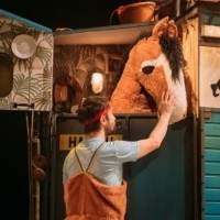 Southbank Centre Announces Premieres From Established And New Artists For 2019 Autumn Photo