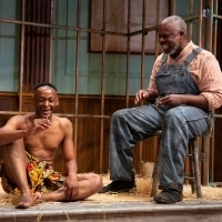 BWW Review: A HUMAN BEING, OF A SORT at Williamstown Theatre Festival Examines the Co Photo