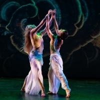 BWW Review: Stimulating dance festival WOMEN/CREATE! at Live Arts New York