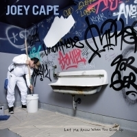 Songwriter Joey Cape Releases Country-Tinged Single THE LOVE OF MY LIFE