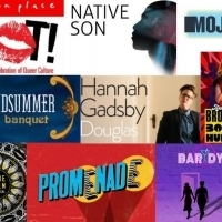 The Maxamoo Podcast Previews July Theatre in New York Photo