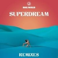 Big Wild Announces 'Superdream Remixes' EP