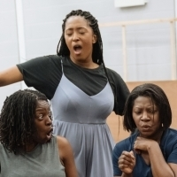 Photo Flash: In Rehearsal with the Leicester Curve and Birmingham Hippodrome's THE CO Photo