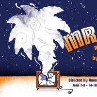 BWW Review: Verge Theater Scores Another Hit With Post-Apocalyptic MR. BURNS... Photo