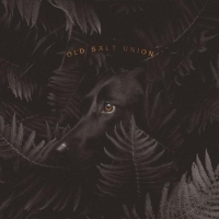 Old Salt Union Announces New Album 'Where The Dogs Don't Bite'