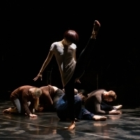 BWW Review: DOUG VARONE AND DANCERS IN THE SHELTER OF THE FOLD / EPILOGUE is Transcen Photo