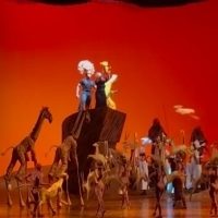 VIDEO: THE LION KING Suffers Flood Due to Blackout; The Show Goes on With Costume Adjustments