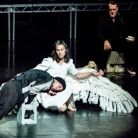 Swan Lake/Loch na nEala to Embark on Extensive tour of North America Photo