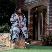 BWW Review: Kenny Leon Directs MUCH ADO ABOUT NOTHING With Georgia Politics On His Mi Photo