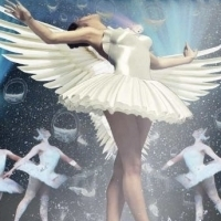 SWAN LAKE... ON THE WATER! to Premiere at Palais 12 Theater