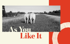 Shakespeare's Globe Announces Full Casting For AS YOU LIKE IT