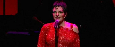 BWW TV: Broadway Beat Special EXCLUSIVE Footage of Liza's At The Palace...!