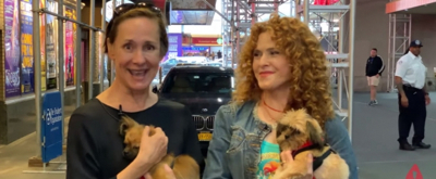 VIDEO: Broadway Barks Cancels 2019 Event Due to Construction in Shubert Alley