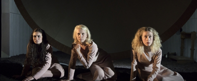 BWW TV: First Look at Grace McLean's IN THE GREEN