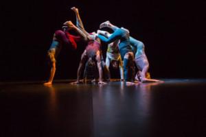 Switzerland Joins Contemporary Dance Festival